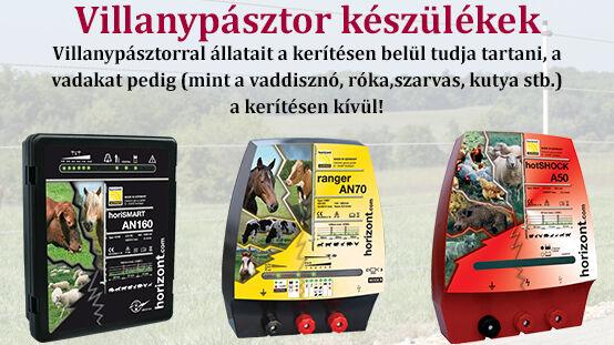 VP_tavasz